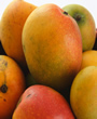 Mango - 5 kg (11 lb) - We alway's pick the best